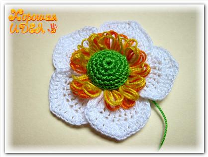 цветок на тенерифе